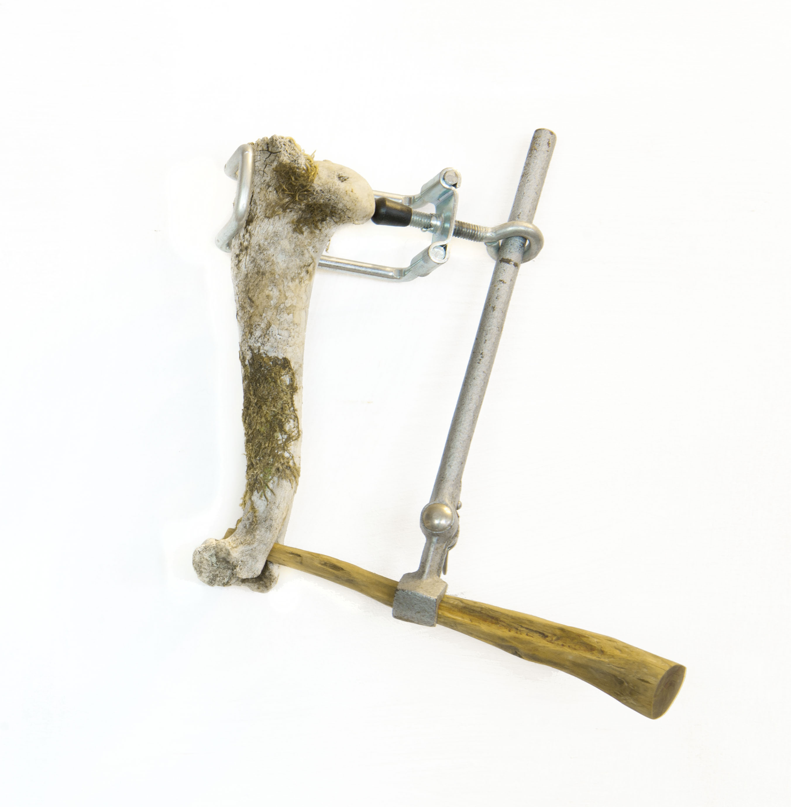 Saikuru I, 2013. Bot klemmen hout L20cm B 18cm D10 cm